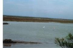 img117 11.5.2005 Il paesaggio mitiga la fatica di dover a volte spingere la bici nella sabbia. L'ultimo tratto è stato ... epico.