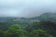 img137 17.5. 2005 I Pirenei