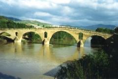 img203 18.5.05 Puente de la Reina, il ponte medievale