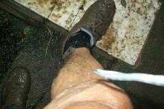 3 n (115) ... malgrado una 1^ secchiata d'acqua sulle gambe