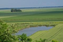 3 n (188) 23 9.5.2012 Croazia - C'è anche la pianura ...