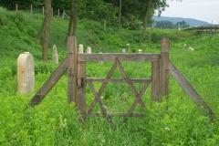 3 n (214) Il cimitero ebraco nei pressi di Letenye (Hu) 2-6-2012